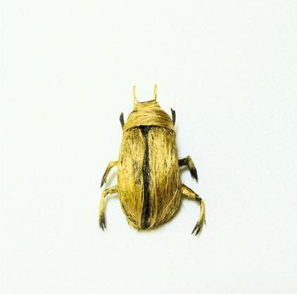 yellow beetle Insects Created from Recycled Human Hair