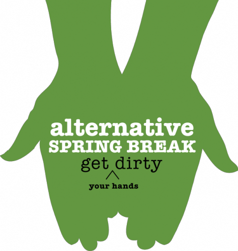 exciting alternative spring break options available for students today.