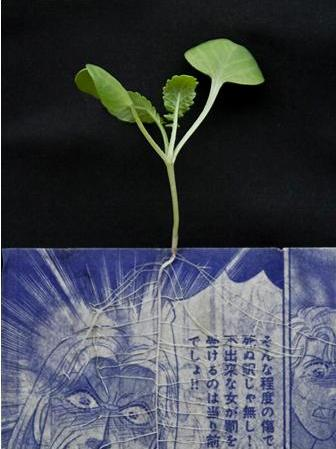 roots between pages When Plants Grow Out of Old Manga Comics