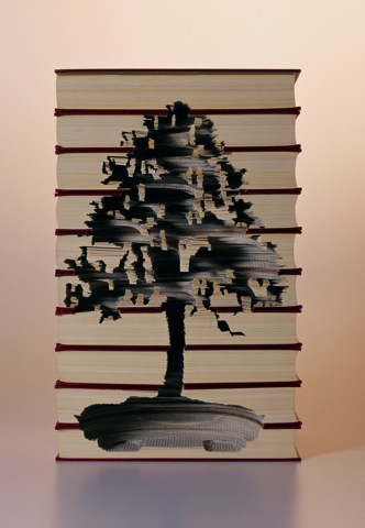 miniature trees recycled dead books