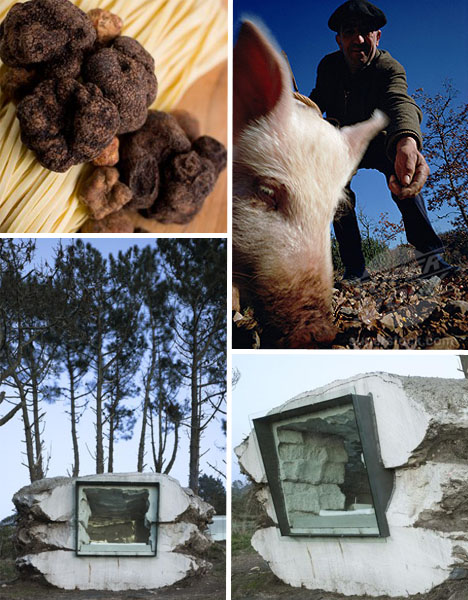 Truffle House Laxe Spain