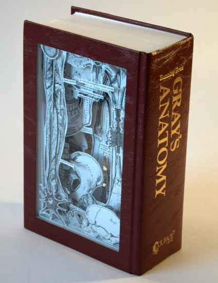 Grays back Old Books Dissected to Create Intricate 3 D Carvings