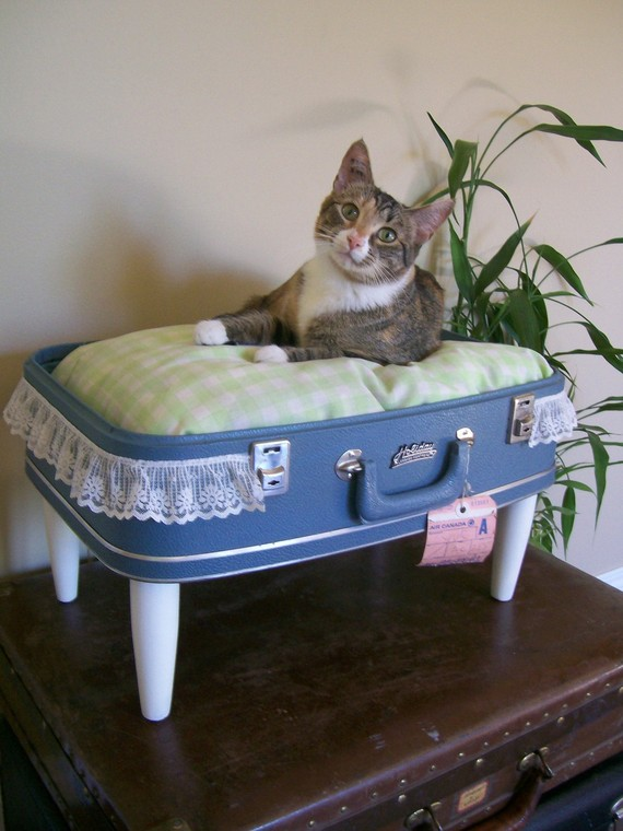 Thirteen Aww-Inspiring Pet Beds Made from Repurposed Suitcases ...