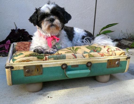 Suitcase style dog bed
