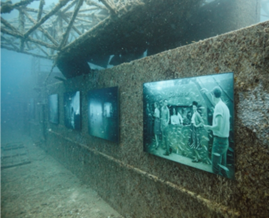 recycled shipwreck art gallery