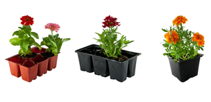 rEarth recycled flower pots