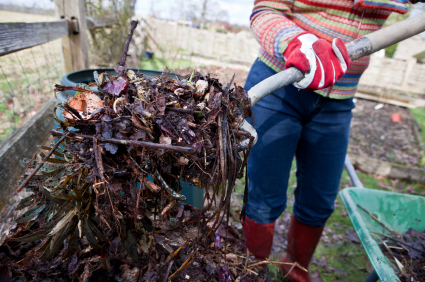 Image result for compost green waste