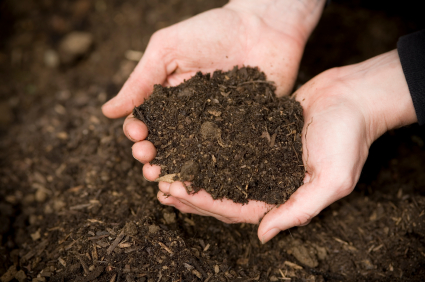 The do s and don ts of composting recyclenation for Things made from soil