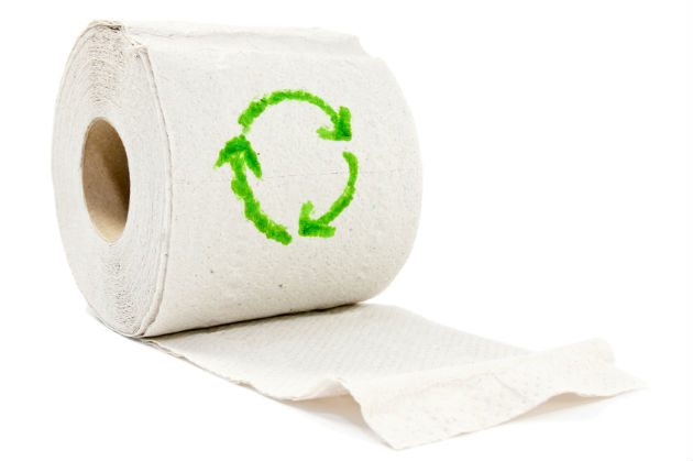 Green your toilet paper recyclenation for Recycling toilet paper tubes