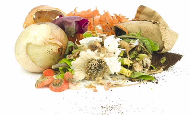 Recycle Food Waste on A Great Fruits And Vegetables List