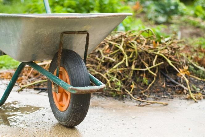 Image result for yard waste disposal