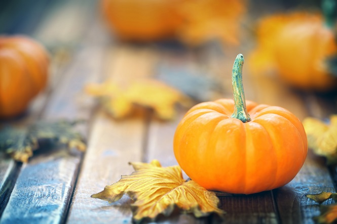 10 Tips for Throwing a Green Spook-tacular Halloween Party ...